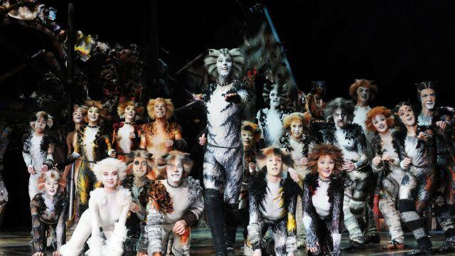 Delta Goodrem to Star in CATS