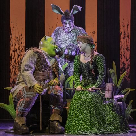 Shrek the Musical. Photo by Brian Geach