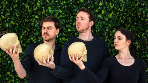 Shakespeare Send-up at Melville